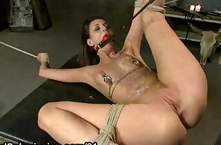 Tied up spread babe with ball in her mouth gets his hard whipped